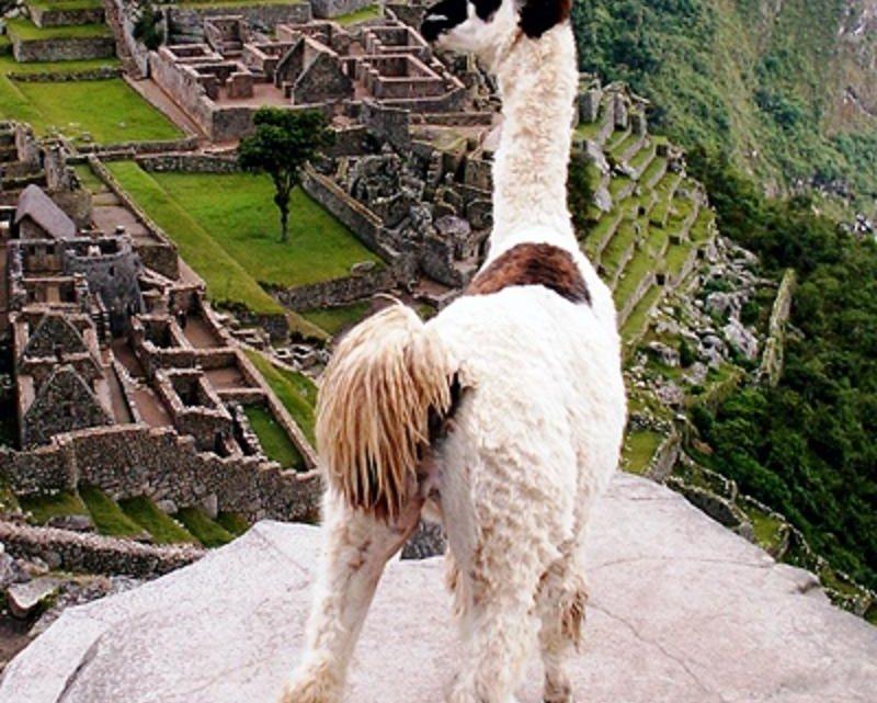 Le Pérou Marco Vasco, les destinations touristiques à retenir